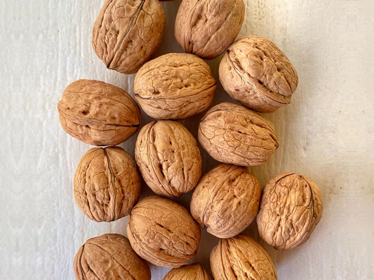 walnut-whole8